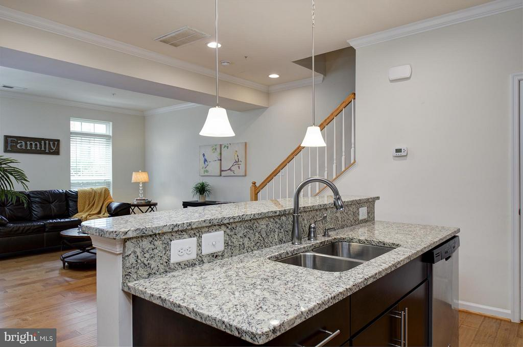 Gleaming Granite Countertops - 7479 BRUNSON CIR, GAINESVILLE