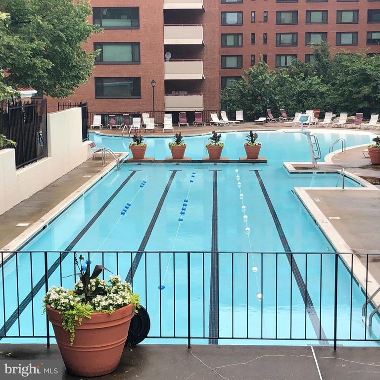 Swimming Pool- Lap Lanes - 1021 ARLINGTON BLVD #1017, ARLINGTON