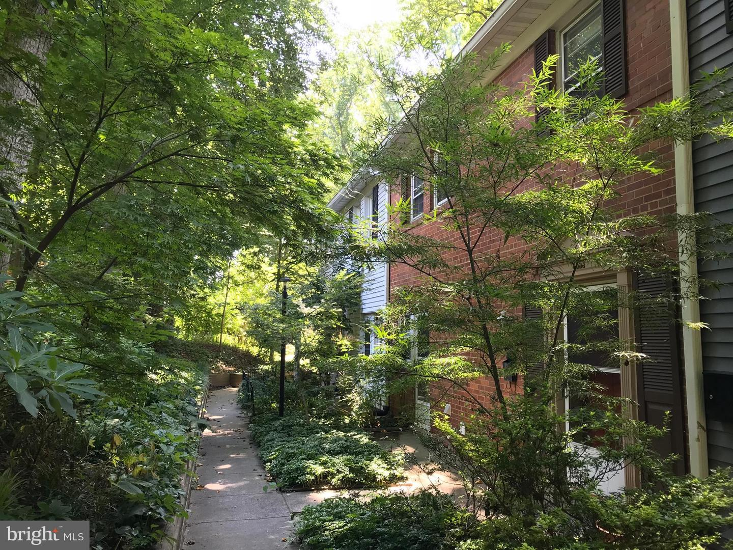 Property for Rent at Silver Spring, Maryland 20901 United States