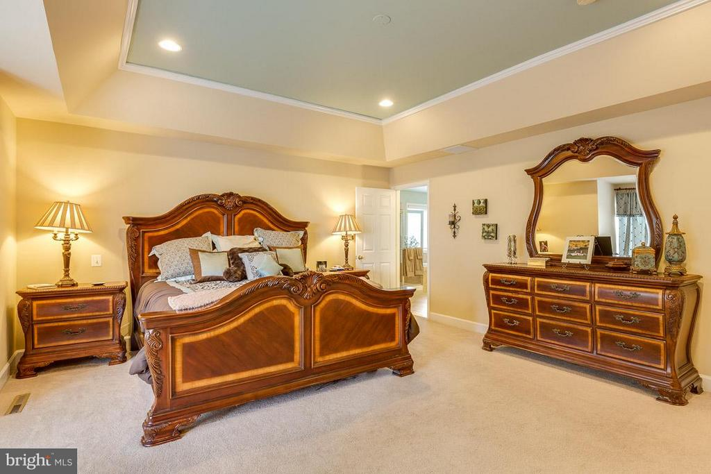 Master Bedroom- Alt View - 21135 WHITE CLAY PL, LEESBURG