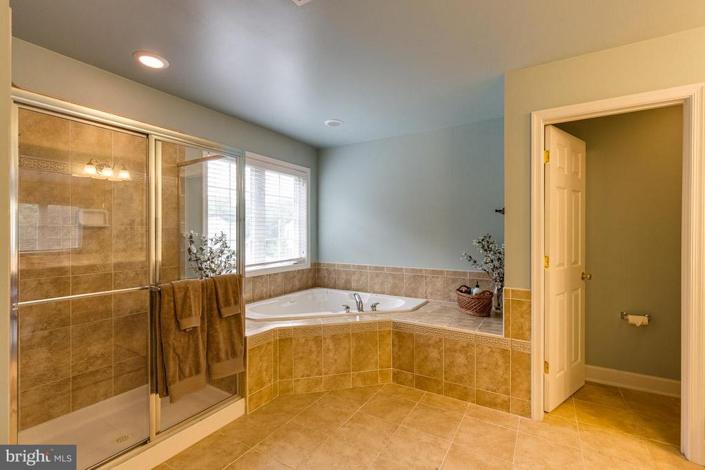 Master Bath with Jetted Soaking Tub - 21135 WHITE CLAY PL, LEESBURG