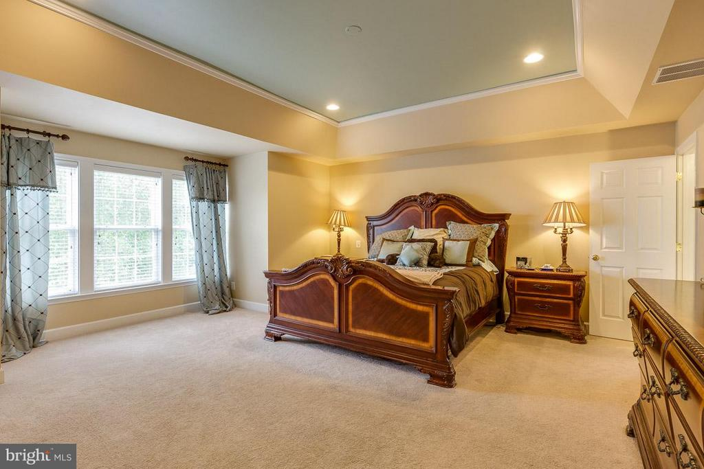 Spacious Master Bedroom with Tray Ceiling - 21135 WHITE CLAY PL, LEESBURG