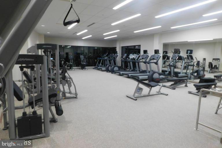 Community Gym - 5904 MOUNT EAGLE DR #118, ALEXANDRIA