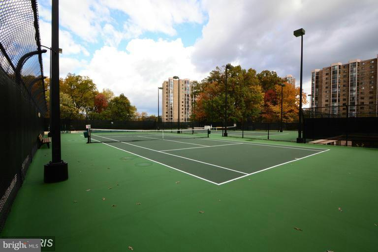 Tennis Courts - 5904 MOUNT EAGLE DR #118, ALEXANDRIA