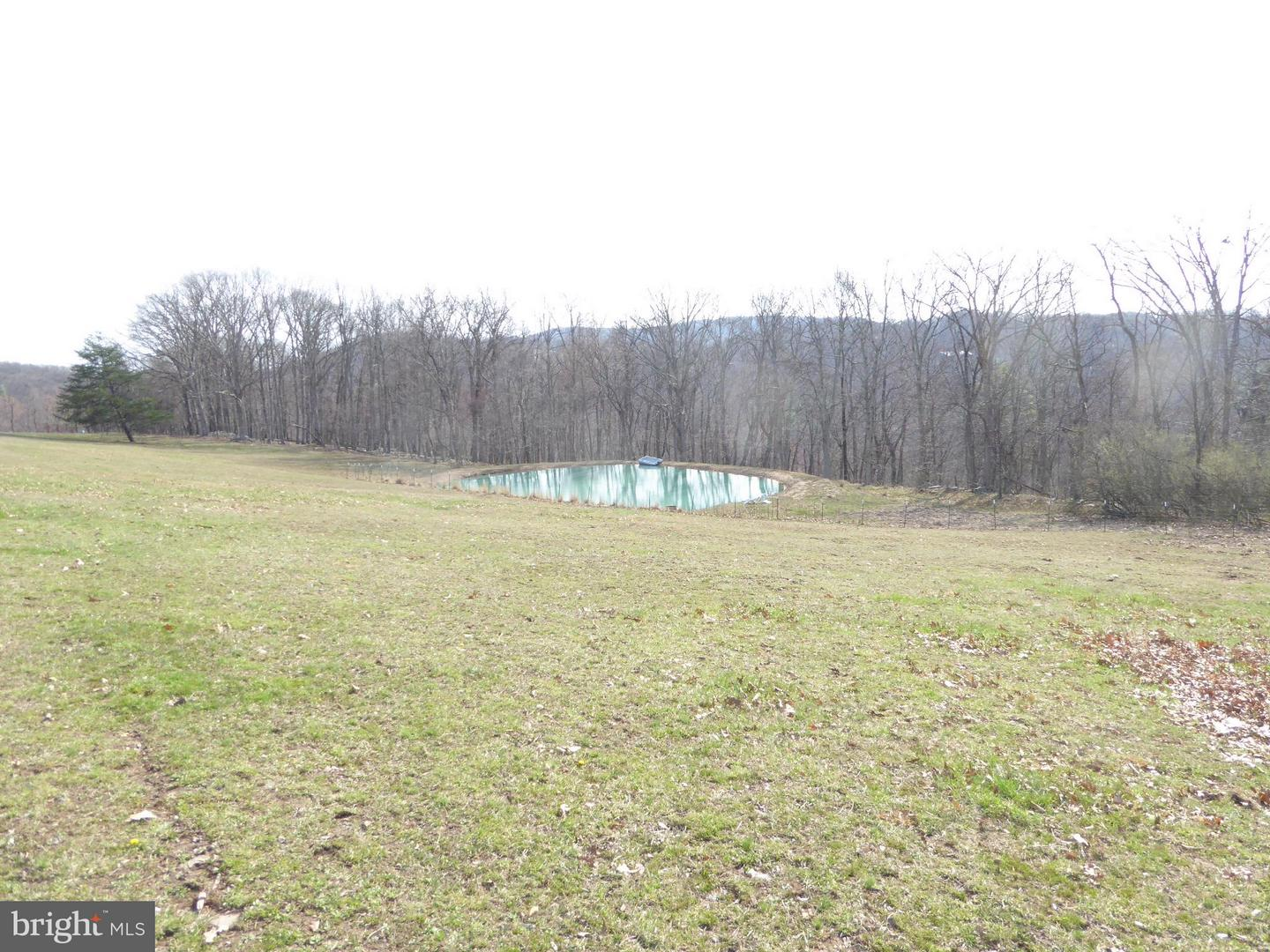Land for Sale at Jennings Pyles Rd Romney, West Virginia 26757 United States