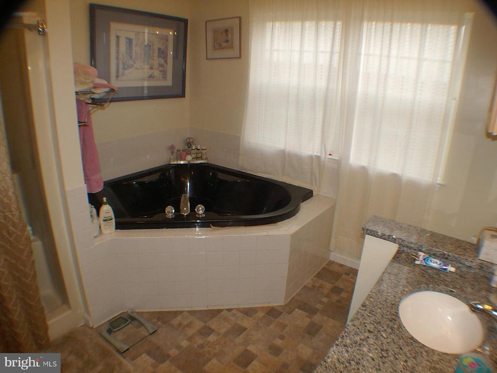 Jetted garden tub sep shower and double vanities. - 1919 WITHERS LARUE RD., BERRYVILLE