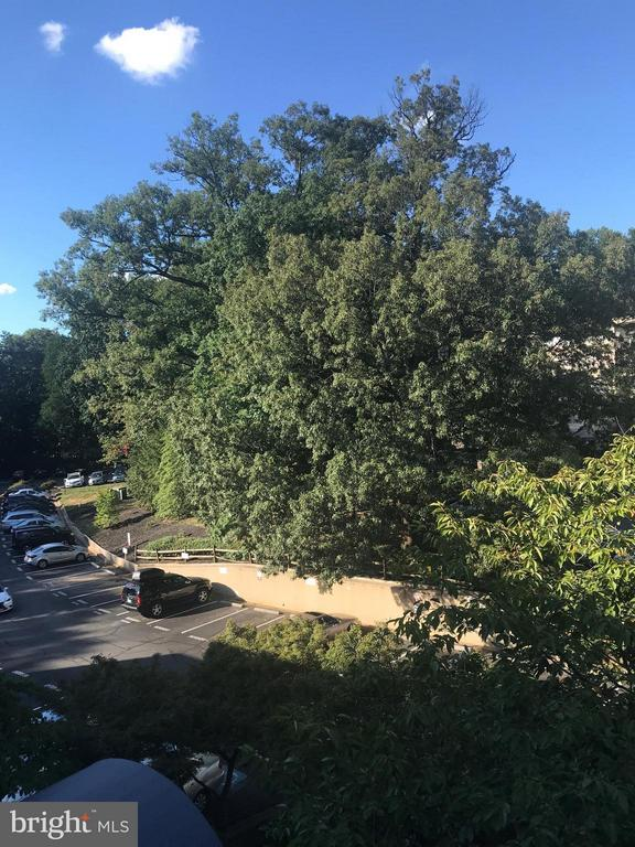 Balcony view to parking lot - 4420 BRIARWOOD CT N #41, ANNANDALE