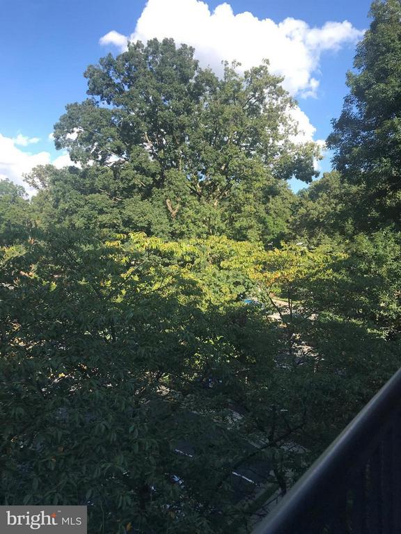 Balcony view - 4420 BRIARWOOD CT N #41, ANNANDALE