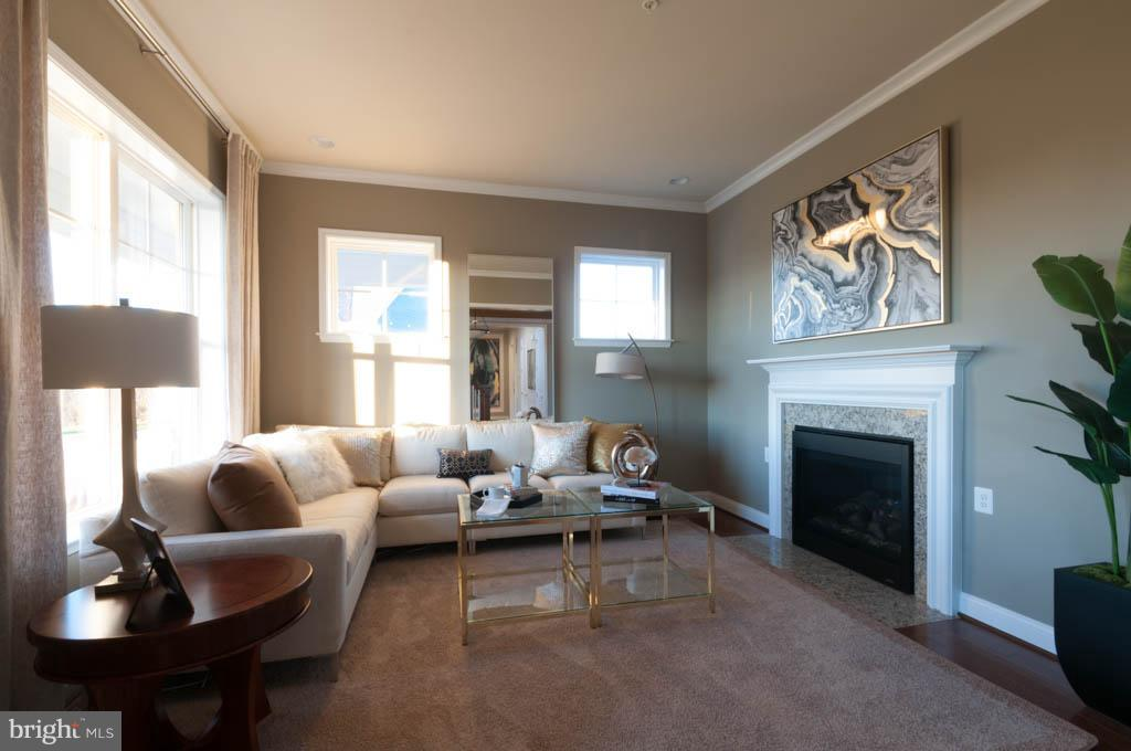 Living Room - 10386 SPRINGSIDE TER, IJAMSVILLE