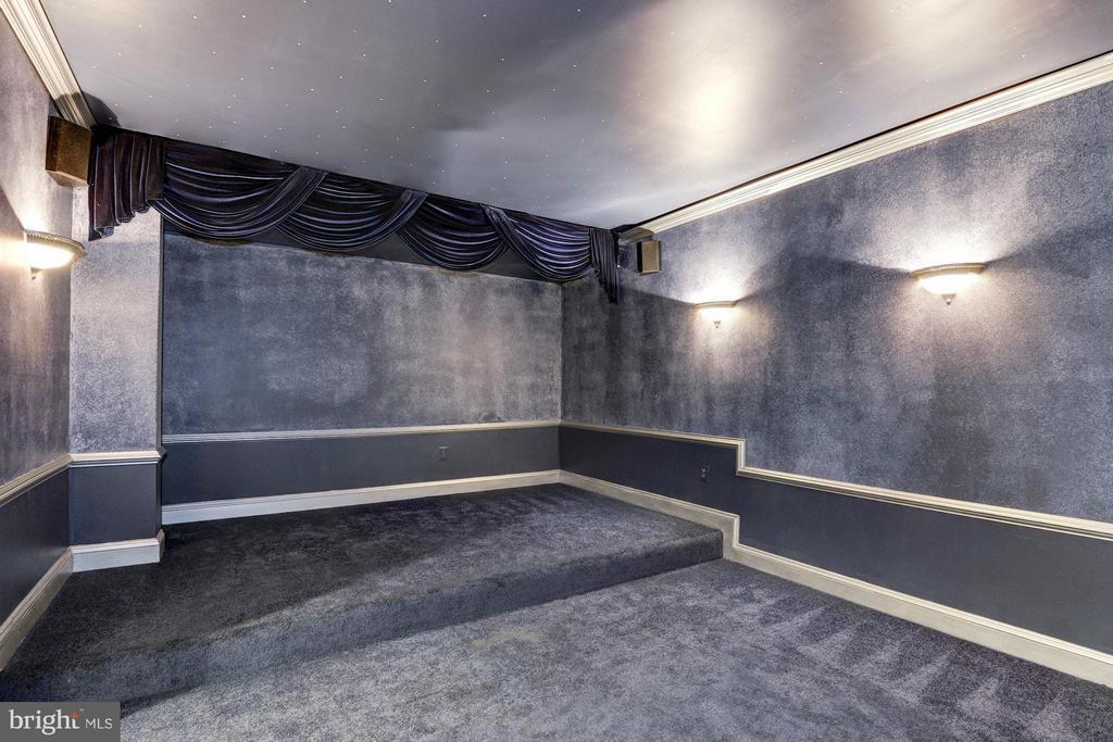 Theatre Room - 10249 LEESBURG PIKE, VIENNA