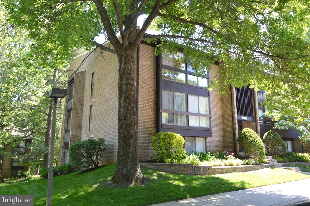 Exterior (Front) - 11556 ROLLING GREEN CT #300, RESTON
