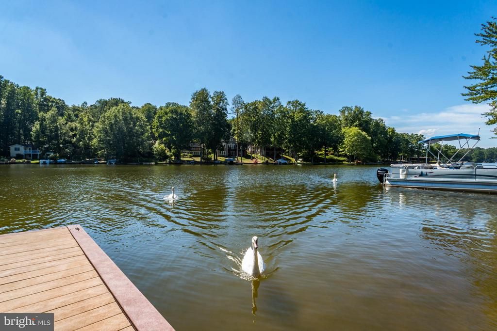 Set at your dock and talk to the swans - 402 HAPPY CREEK RD, LOCUST GROVE