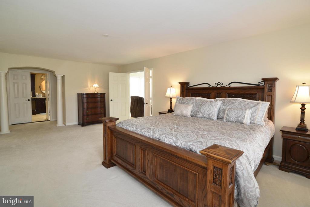 Bedroom (Master) - 42001 RASPBERRY DR, LEESBURG
