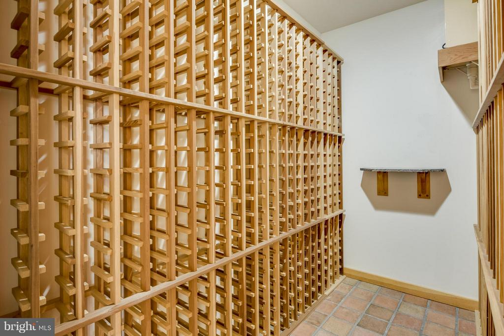Wine Room (temp controlled) - 10722 FAWN DR, GREAT FALLS