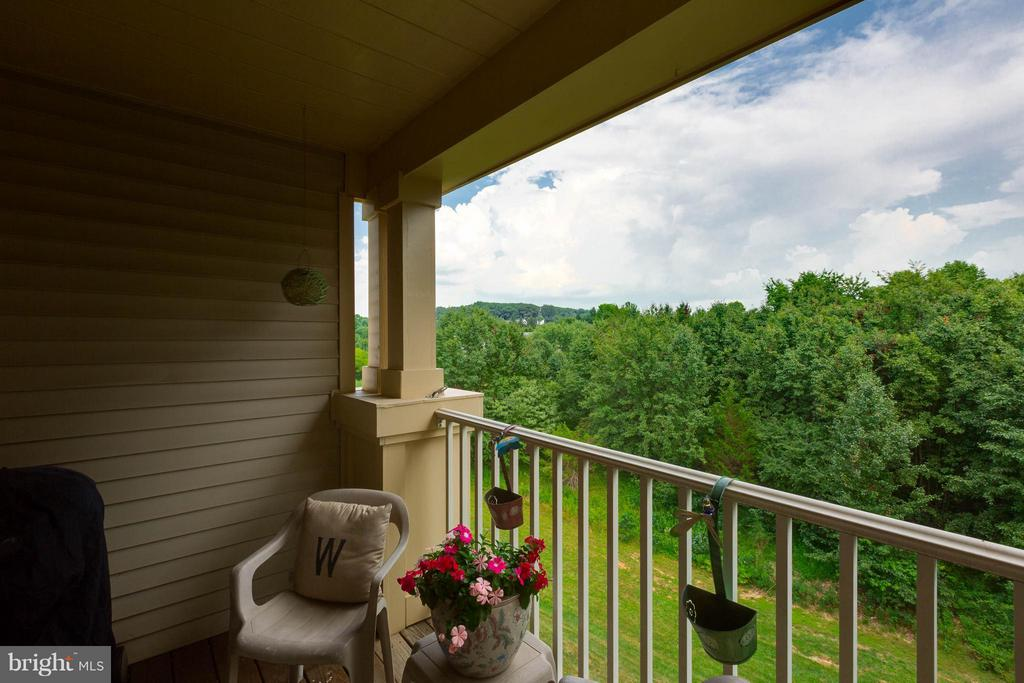 Relax on the balcony - 11820 ETON MANOR DR #302, GERMANTOWN