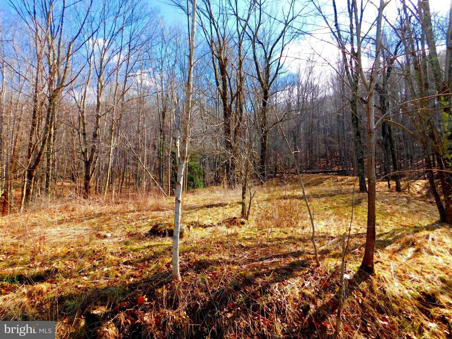 Land for Sale at 319lot Upper Ford Rd Mc Henry, Maryland 21541 United States