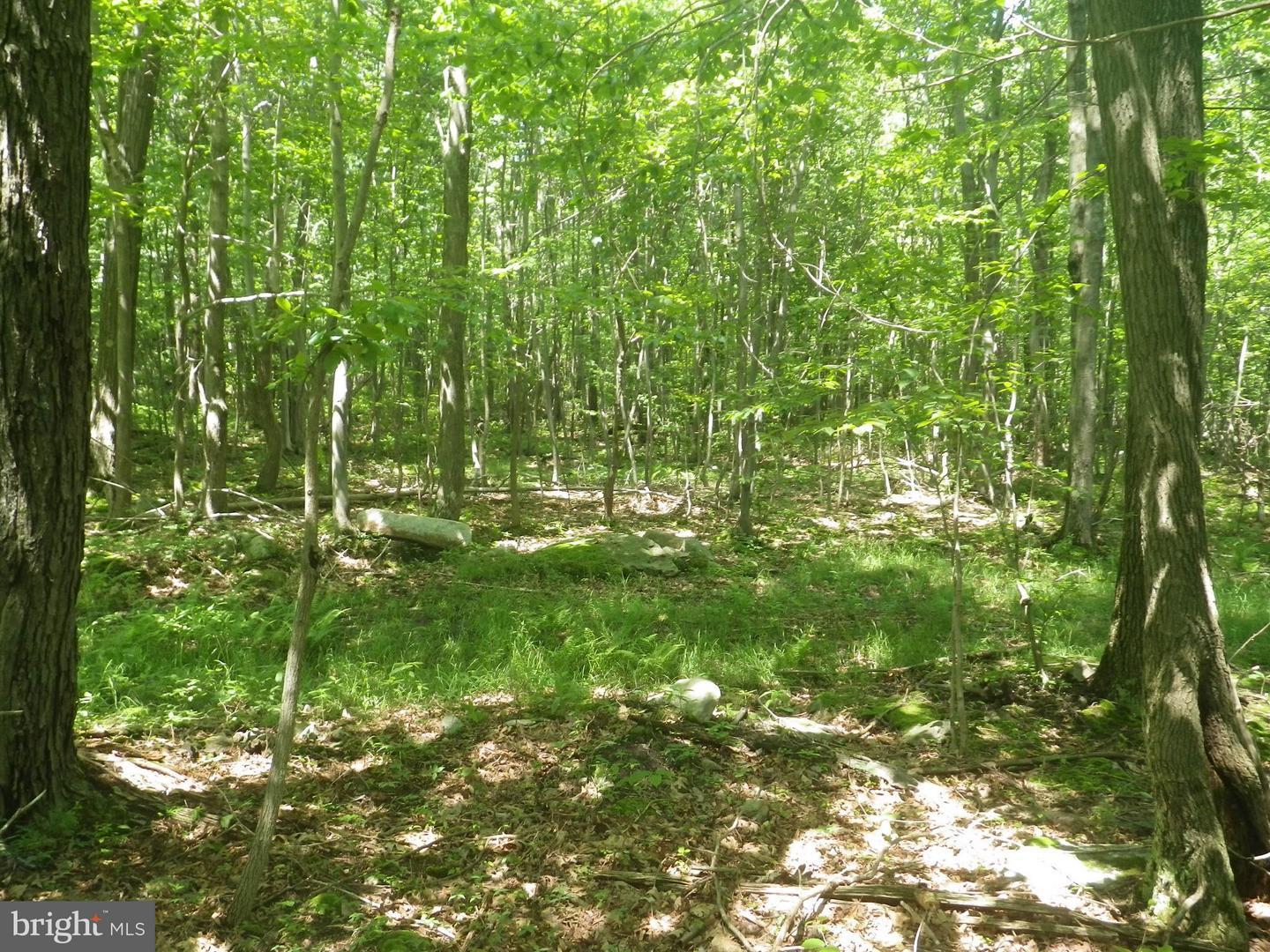 Land for Sale at Cumberland Hwy Meyersdale, Pennsylvania 15552 United States