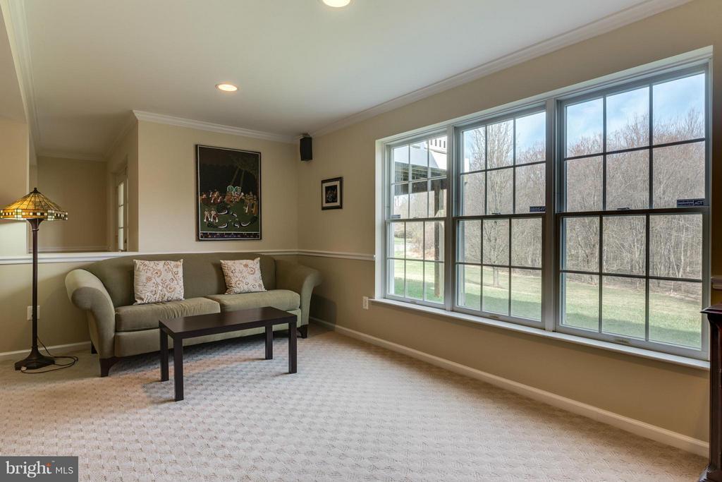 Lower Level w/full size windows - 10864 HUNTER GATE WAY, RESTON