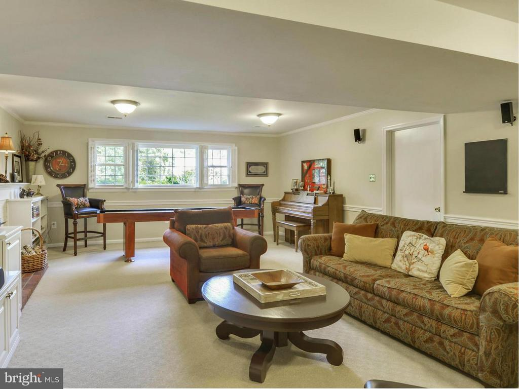 Basement is fully finished w/ lots of light - 3901 PINE BROOK RD, ALEXANDRIA