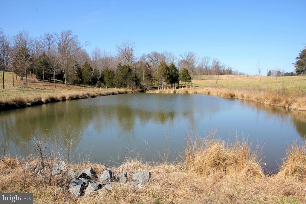Pond - 3374 TWYMANS MILL RD, ORANGE