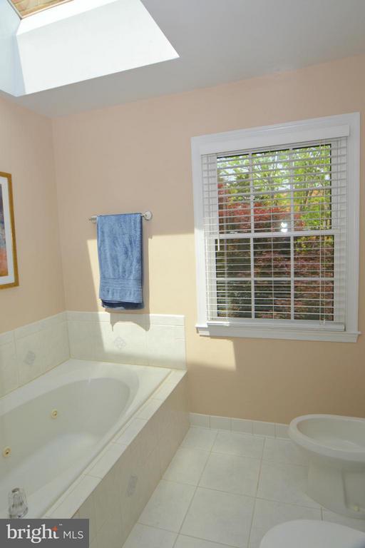 Bath (Master) - 7302 AYNSLEY LN, MCLEAN