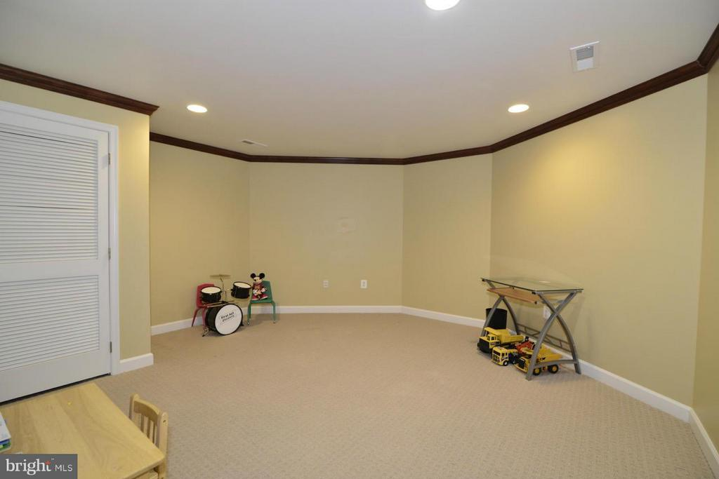 Lower level additional room #2 - 20736 ASHBURN STATION PL, ASHBURN