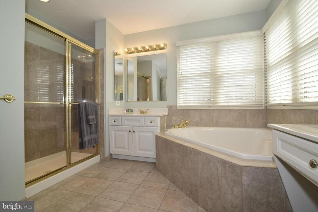 Master Bath - 20736 ASHBURN STATION PL, ASHBURN