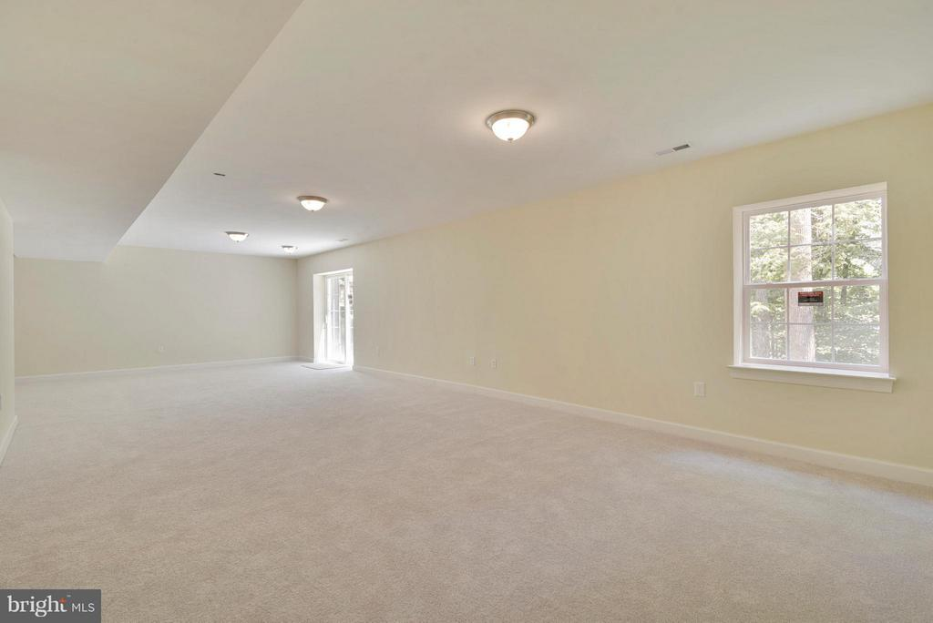 LARGE Rec Room with loads of light - 18413 CEDAR DR, TRIANGLE