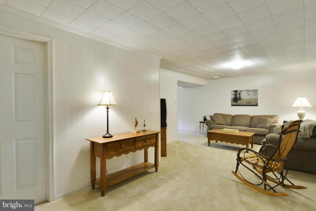 Spacious recreation room - 790 3RD ST, HERNDON