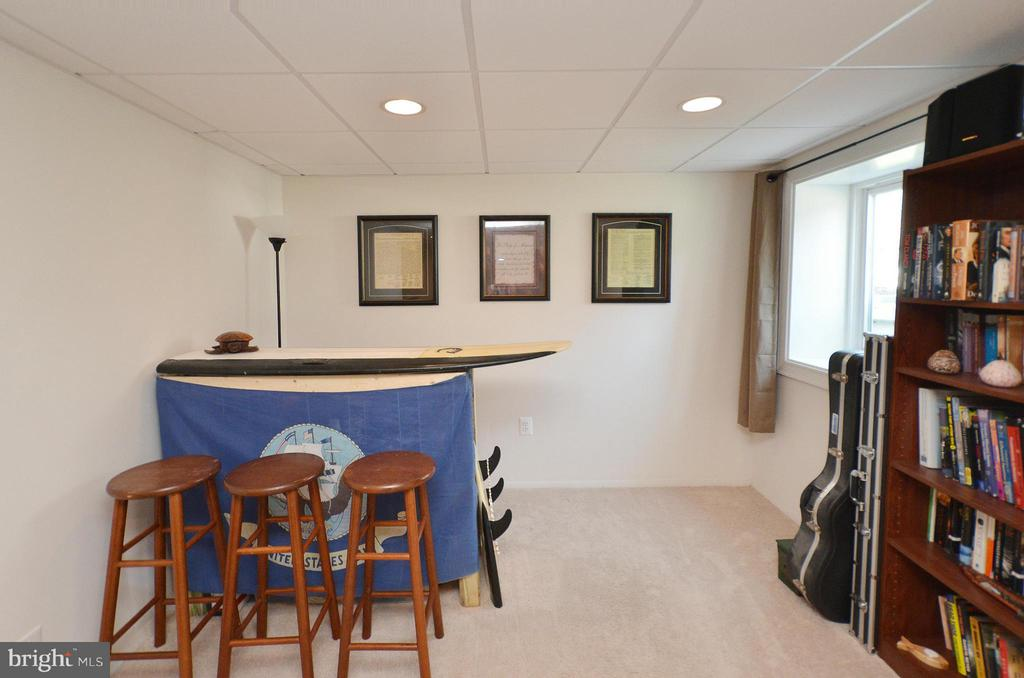 Sun Filled Finished Lower Level - 2352 HORSEFERRY CT, RESTON