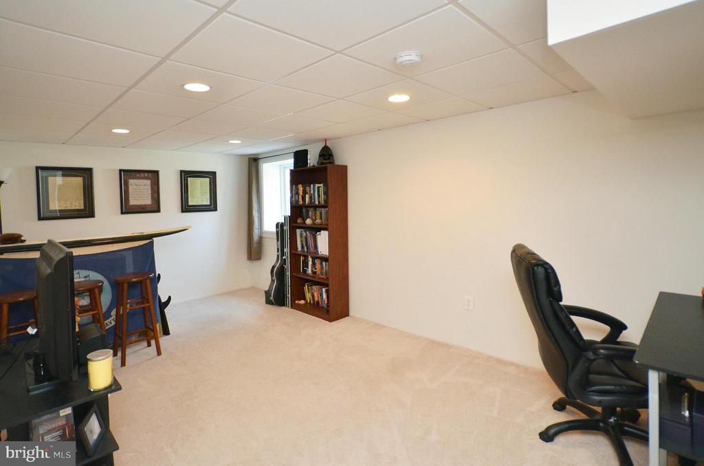 Lower Level Rec Room - 2352 HORSEFERRY CT, RESTON