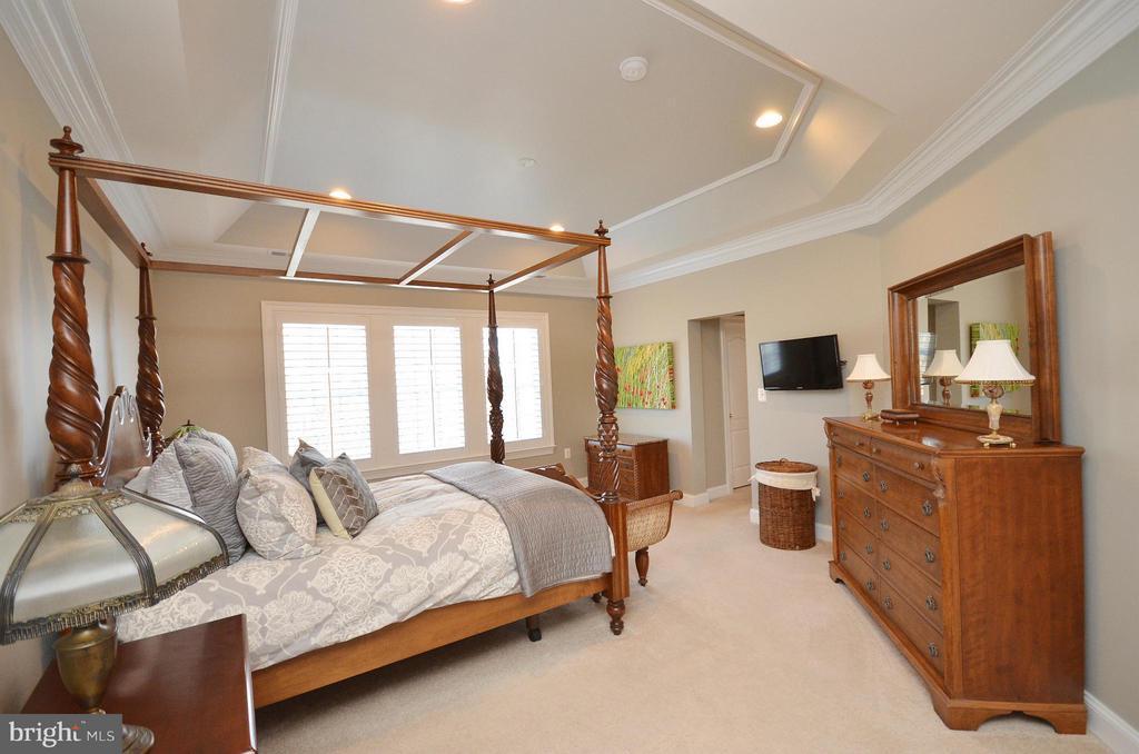 Bedroom (Master) - 41852 MARIGOLD MILL PL, ASHBURN