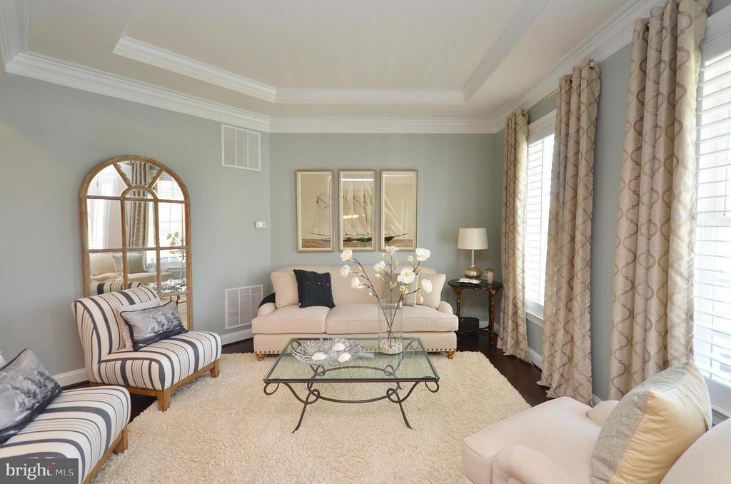 Living Room - 41852 MARIGOLD MILL PL, ASHBURN