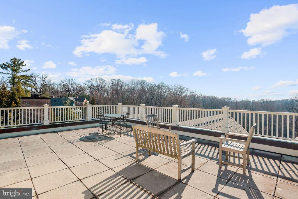 360 views, Roof terrace accessible from Elevator - 3101 CHAIN BRIDGE RD NW, WASHINGTON