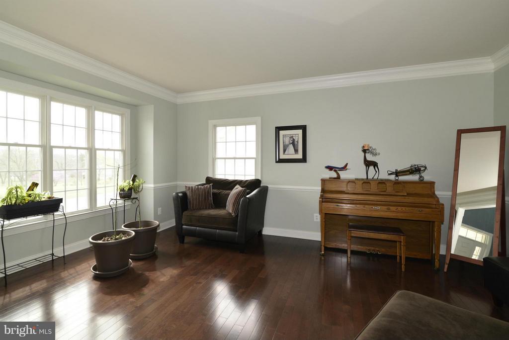 Living Room - 43322 FAREWELL DANCE DR, LEESBURG