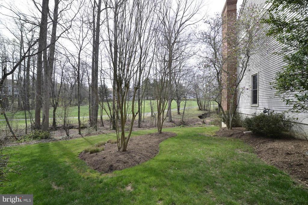 Yard - 12013 CALIE CT, FAIRFAX