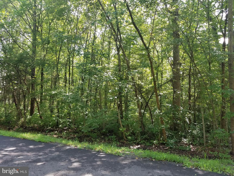 709 YORKTOWN BLVD  Locust Grove, Virginia 22508 Hoa Kỳ