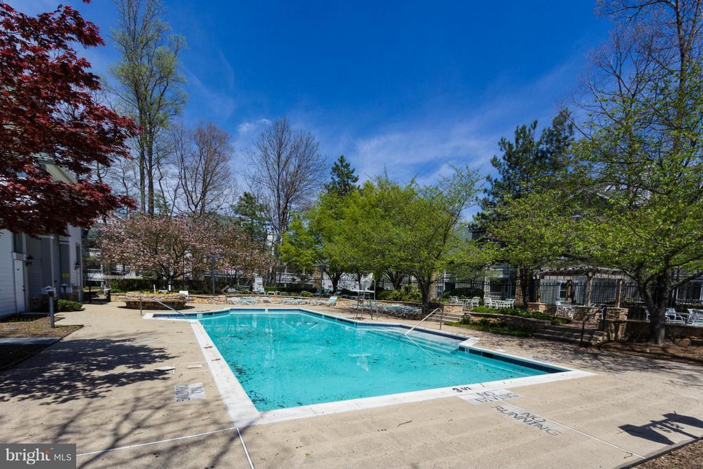 Outdoor pool - 13060 AUTUMN WOODS WAY #201, FAIRFAX