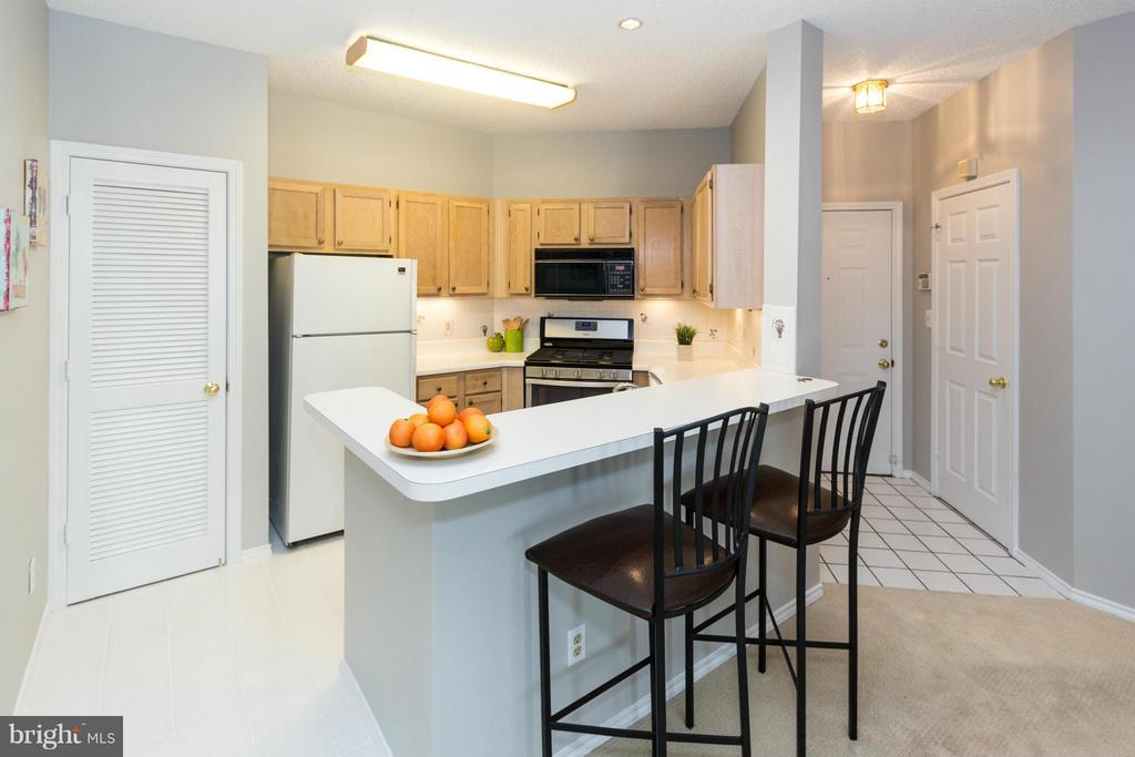 Kitchen bar and large pantry - 13060 AUTUMN WOODS WAY #201, FAIRFAX