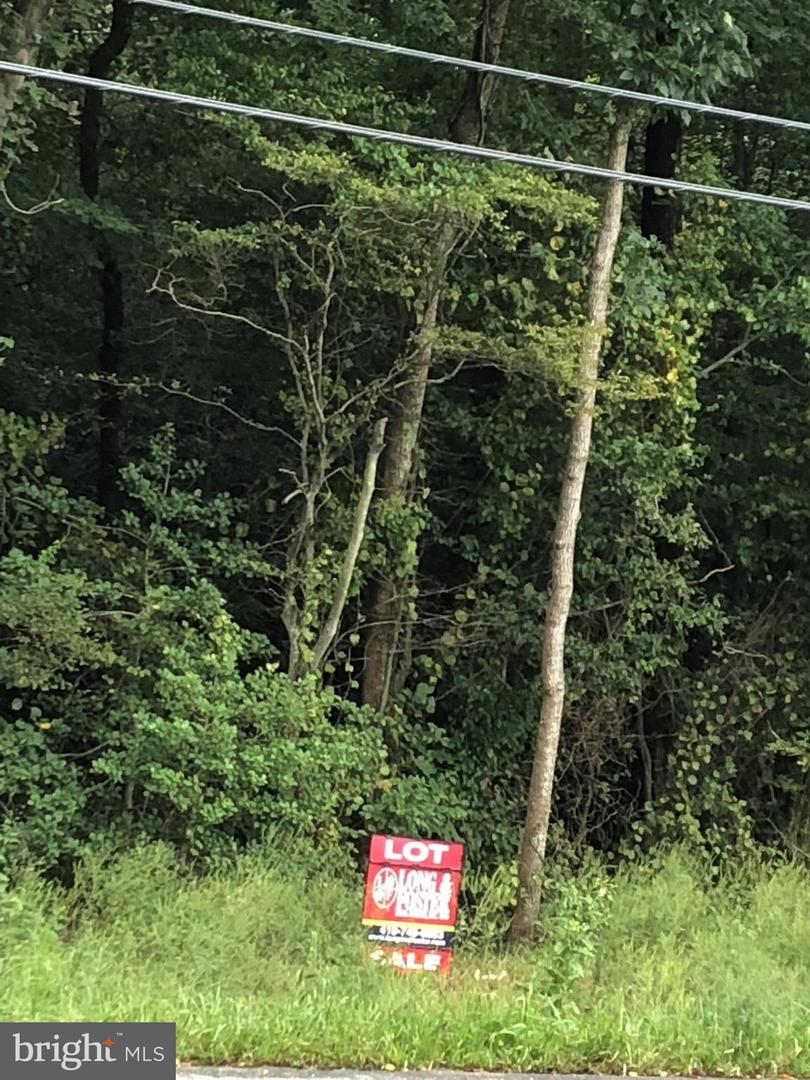 Land for Sale at Harmony - Md Rt 16 Rd Denton, Maryland 21629 United States