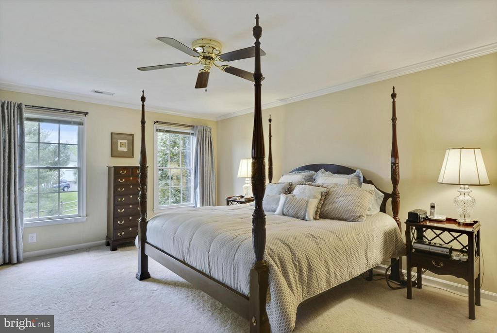 Bedroom (Master) - 1321 DASHER LN, RESTON