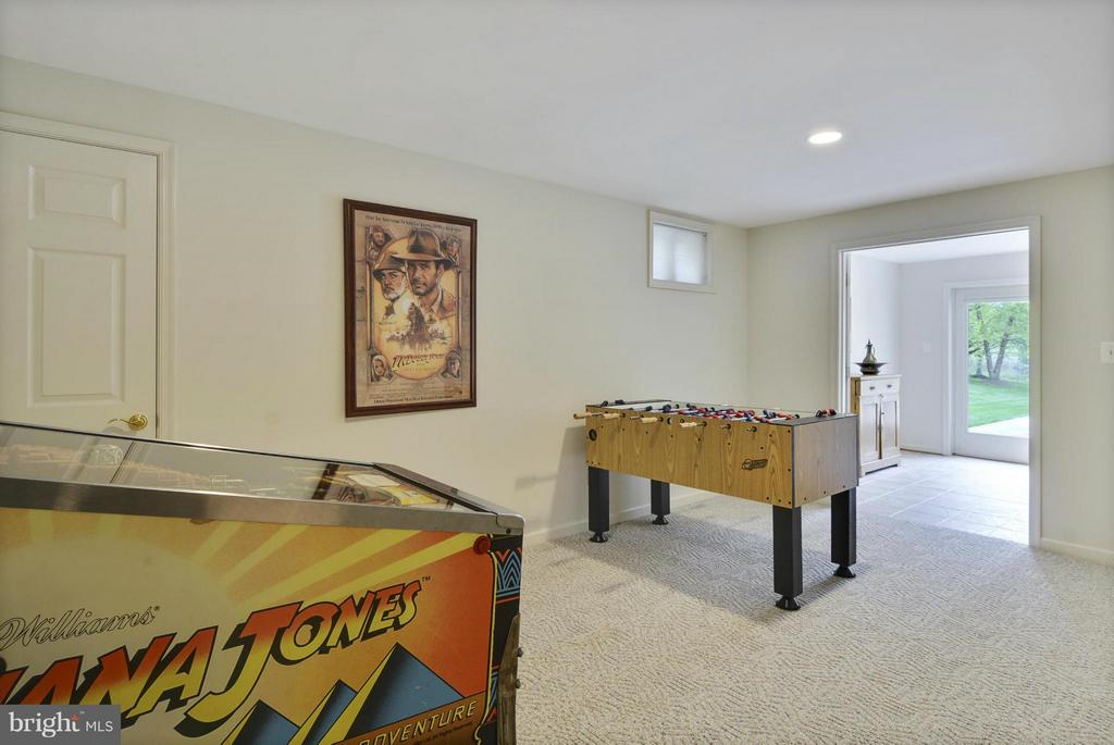 Game Room - 1321 DASHER LN, RESTON