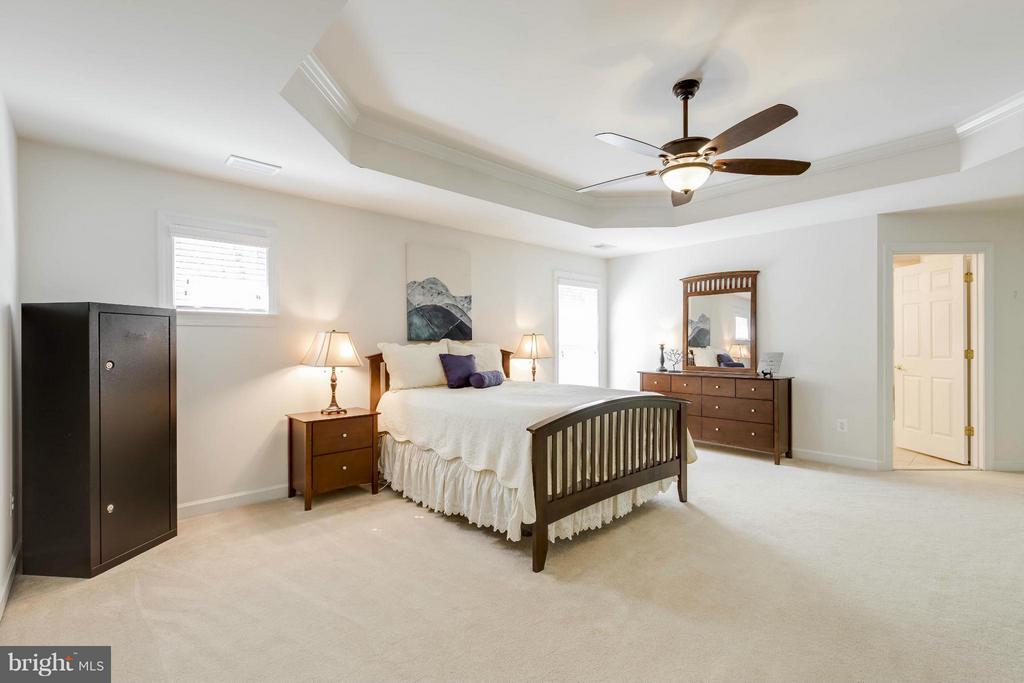 Bedroom (Master) - 14388 WATERFORD WOODS CT, LEESBURG