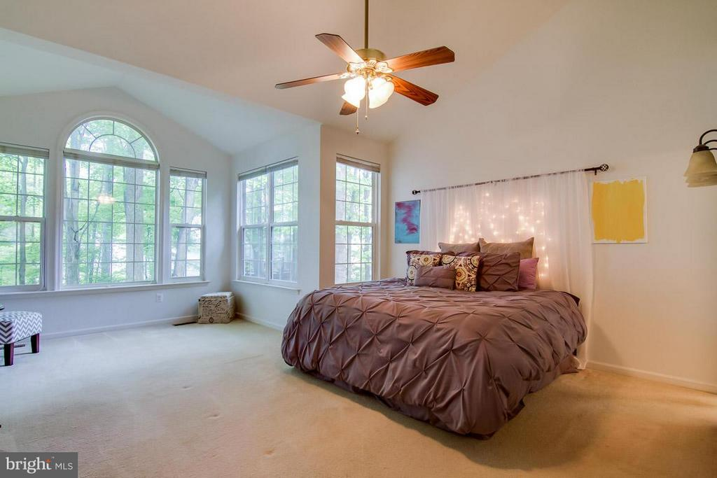 Bedroom (Master) - 14870 HARVEST MOON LN, WOODBRIDGE