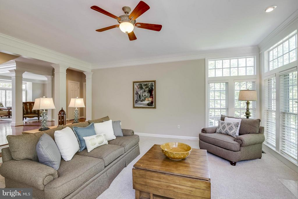 Family Room - 43412 SPANISH BAY CT, LEESBURG