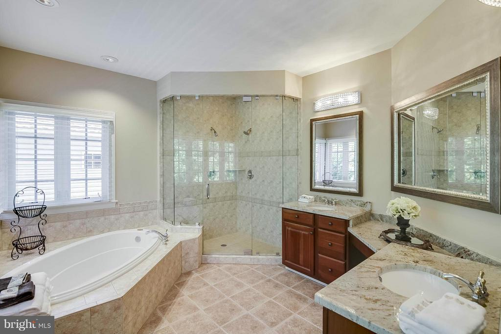 Bath (Master) - 43412 SPANISH BAY CT, LEESBURG