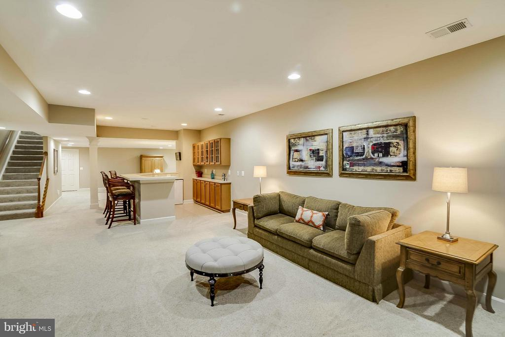 Basement - 43412 SPANISH BAY CT, LEESBURG