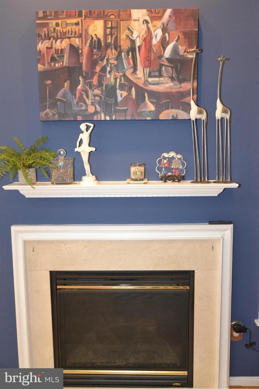 Family Room - 21900 SCHENLEY TER, BROADLANDS