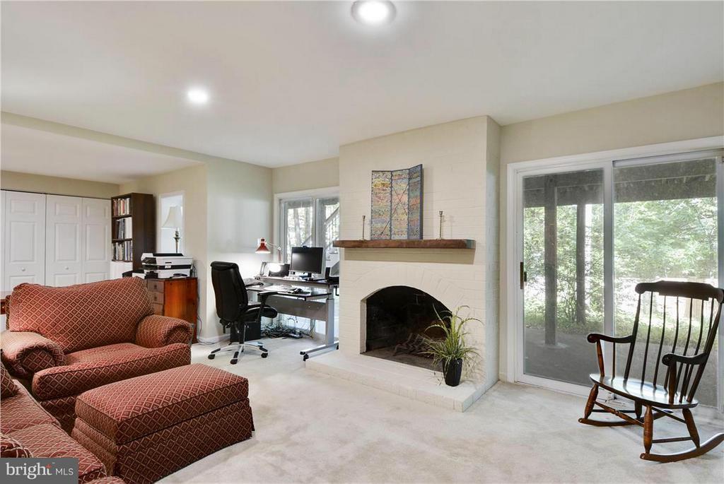 family Room on lower level - 2615 BLACK FIR CT, RESTON
