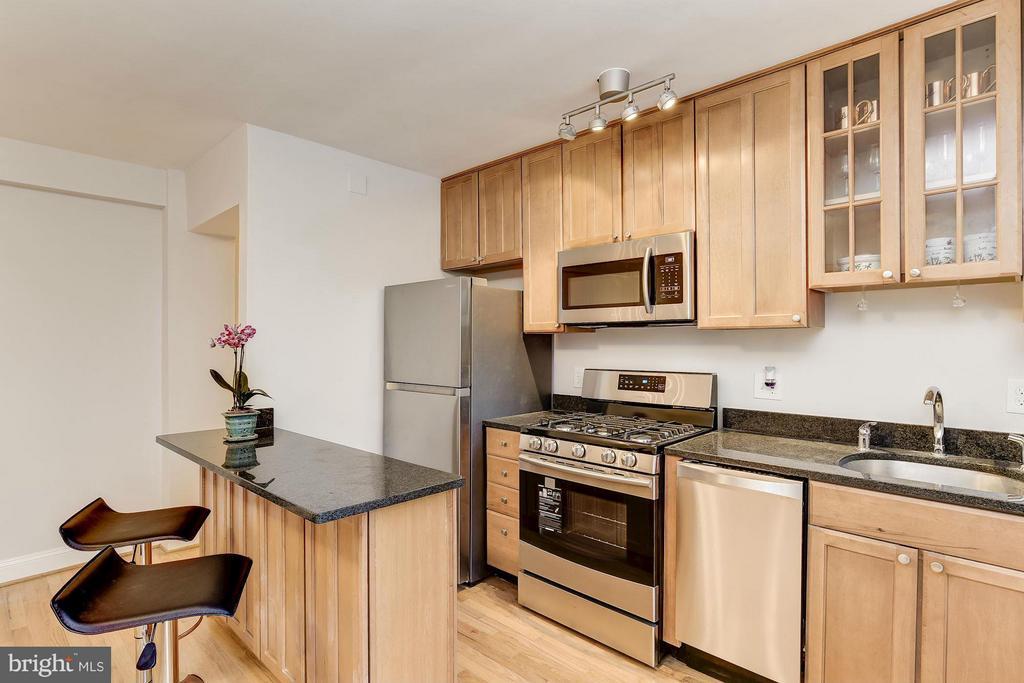 Modern Kitchen -- every millennial's dream! - 2410 20TH ST NW #8, WASHINGTON